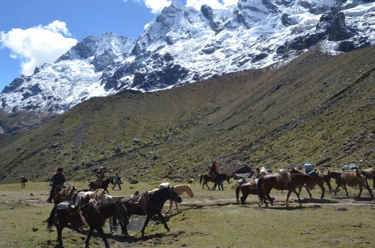 Salkantay Trek Erfahrung